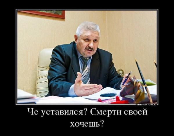 Мамаев Сергей Павлинович, демотиватор