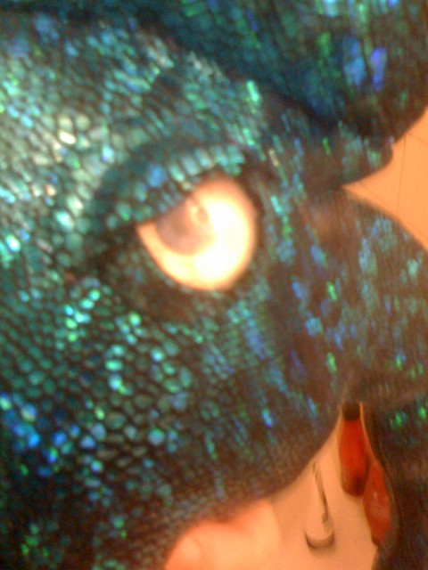 Kaled Mutant Mk II Eye closeup