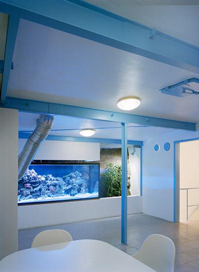 подземный офис, швеция