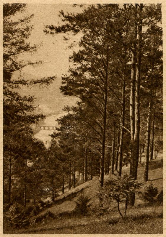 Вид с горы Косотур