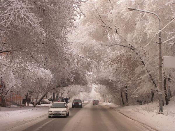 зима на гладкова