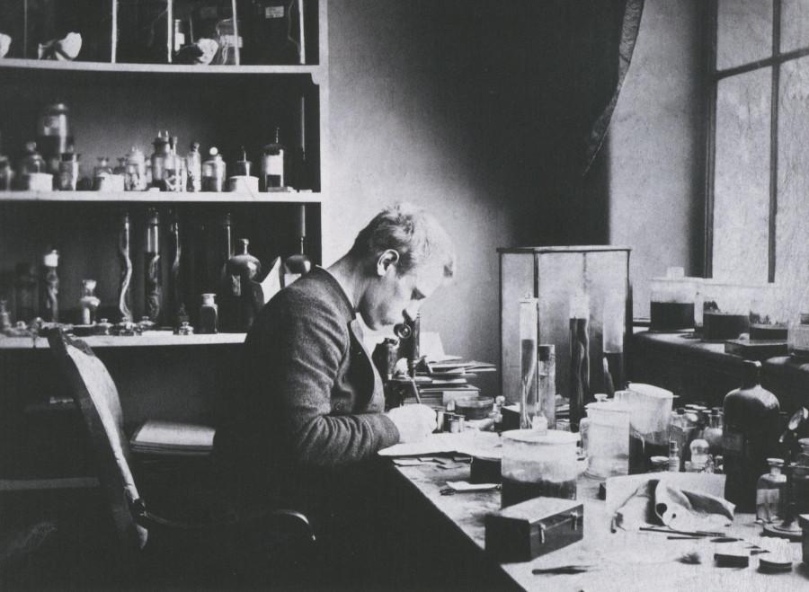 Фритьоф Нансен начинал как ученый-зоолог, лаборант с ничтожным жалованьем в музее города Бергена
