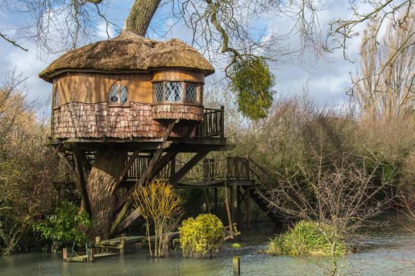 Tree-house3