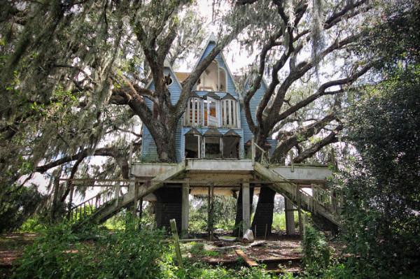 Tree-house5