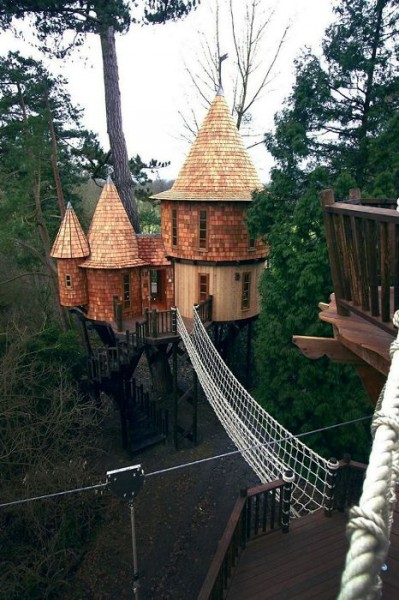 Tree-house8