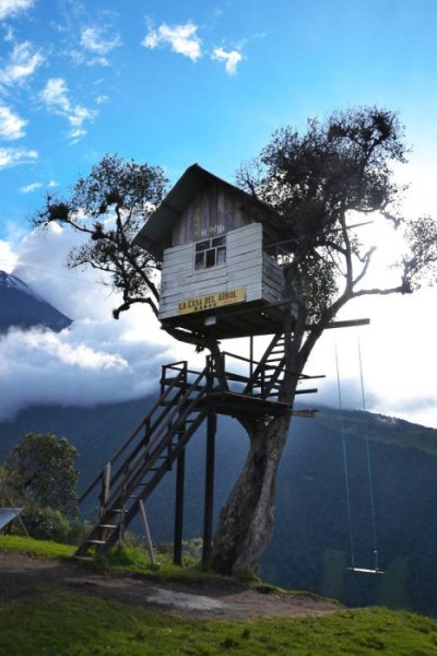 Tree-house12