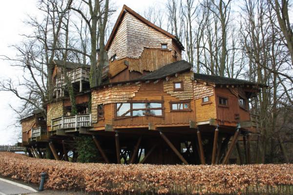 Tree-house19