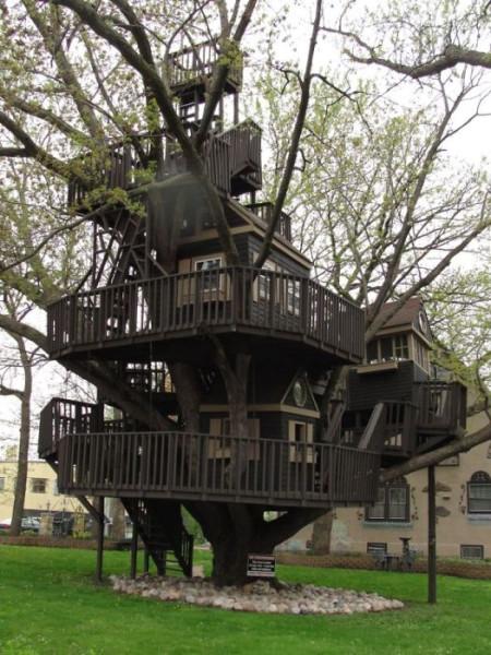 Tree-house21