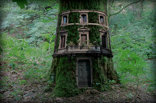 Tree-house4