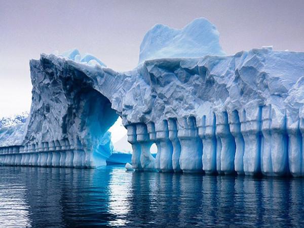 glaciersnIcebergs08
