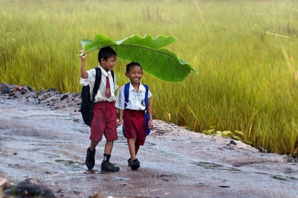 2707755-R3L8T8D-650-two-kids-under-a-banana-leaf-in-the-rain-indonesia