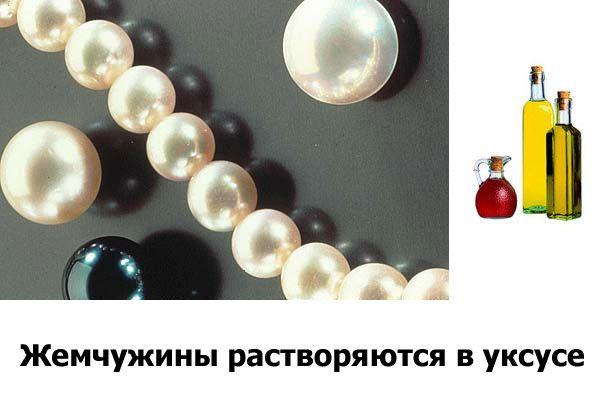b5e73fa240103b8e5ddf219225c00f6e