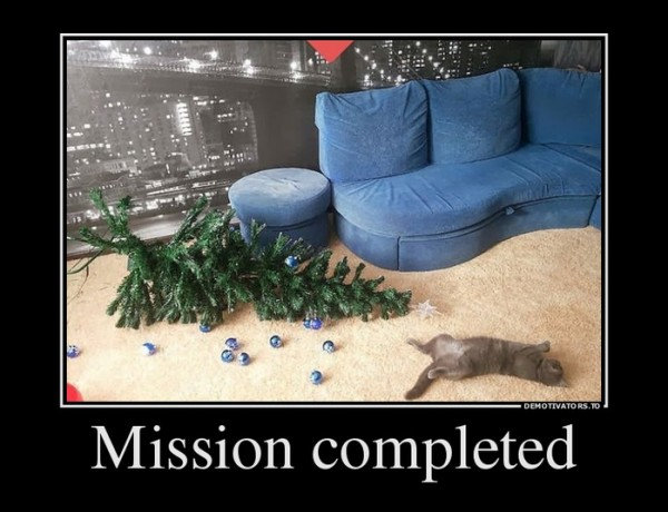 119430993_71642033_missioncompleted