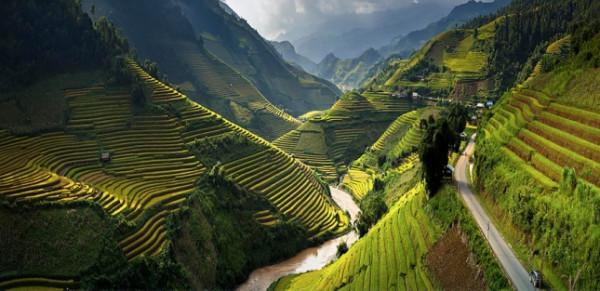 terraced-rice-fields-3__880-645x313
