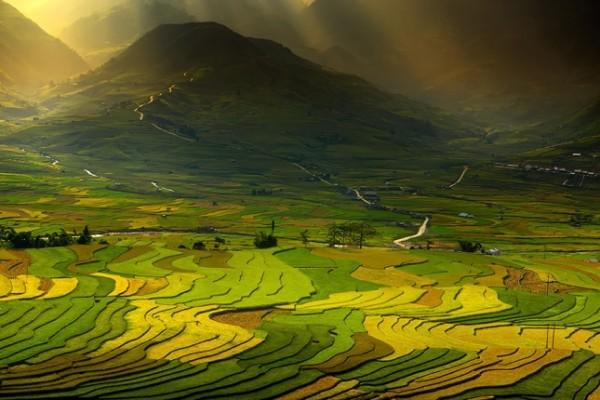 terraced-rice-fields-5__880-645x430
