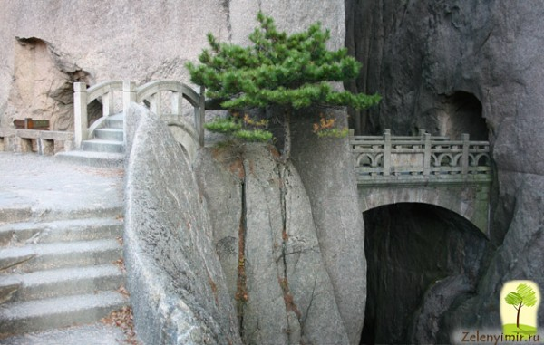 Huanshan-foto