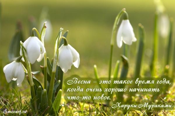 https://ic.pics.livejournal.com/krambambyly/45254913/6971724/6971724_600.jpg