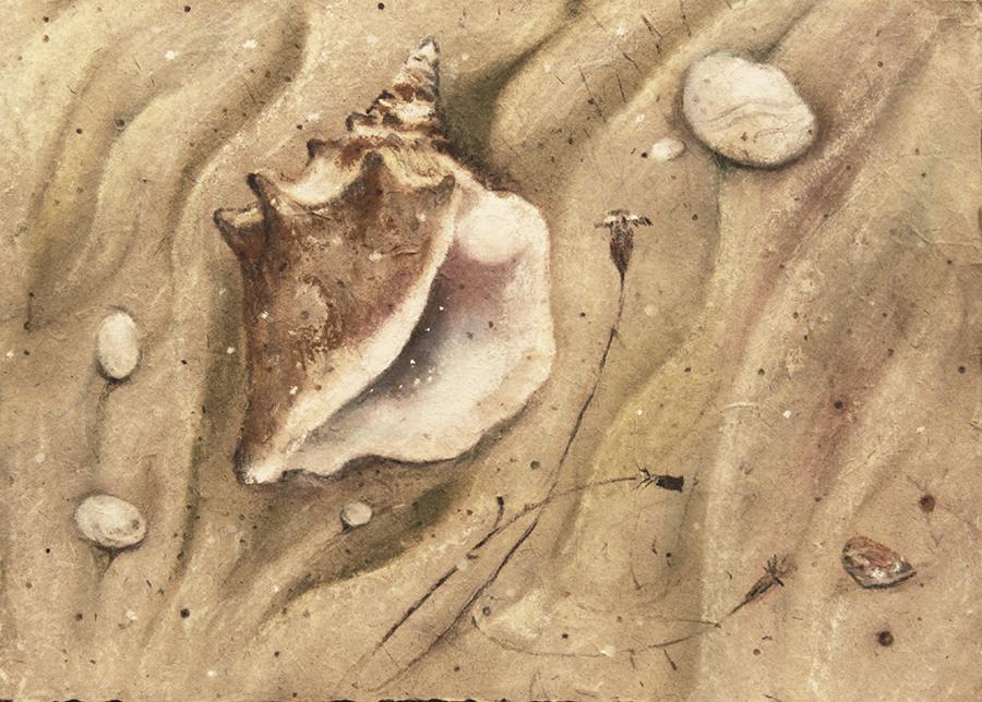 домик у моря 900-4
