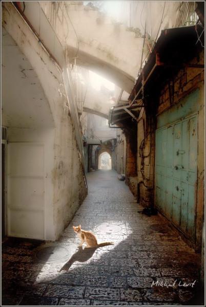 Утро Иерусалима