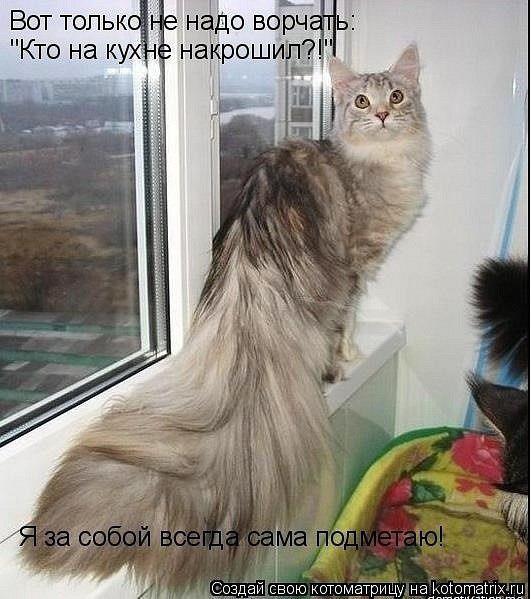 Котє убирашка