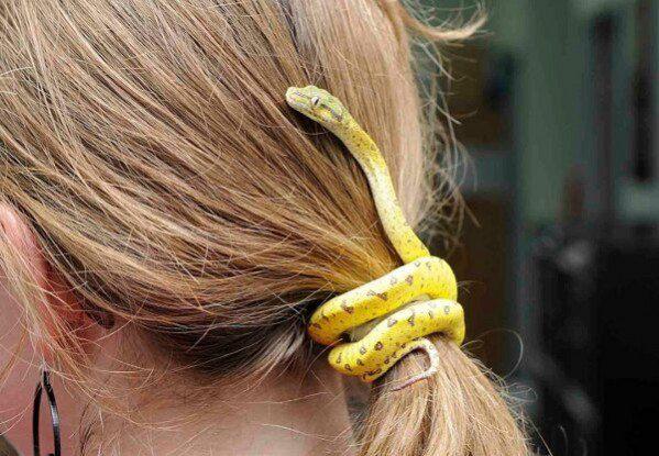 Змея заколка