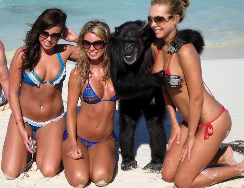 Теория мошонки the_least_sexy_bikini_photos_ever_09