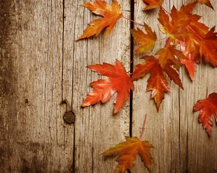 Осенние листья на досках
