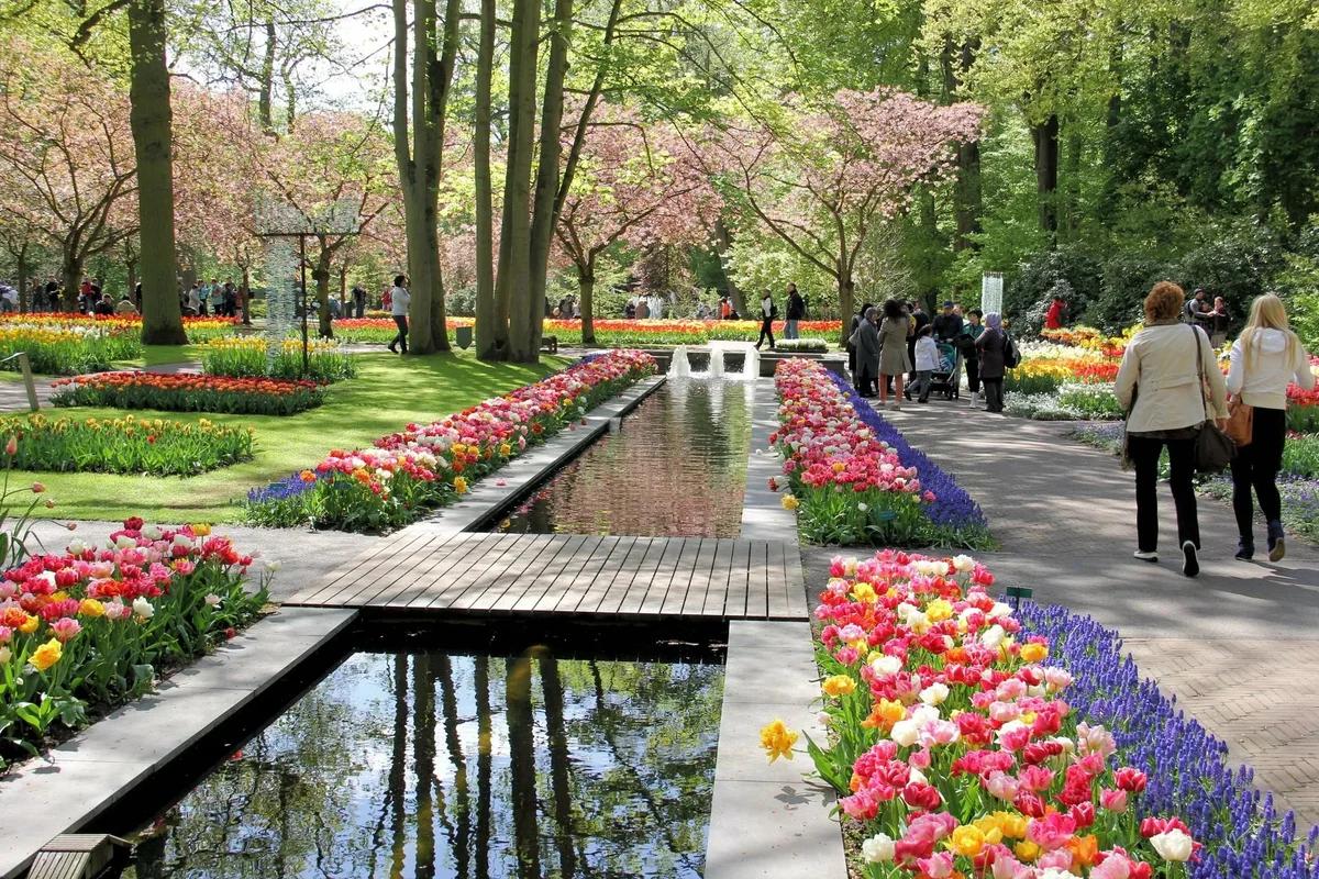 Парк в Нидерландах