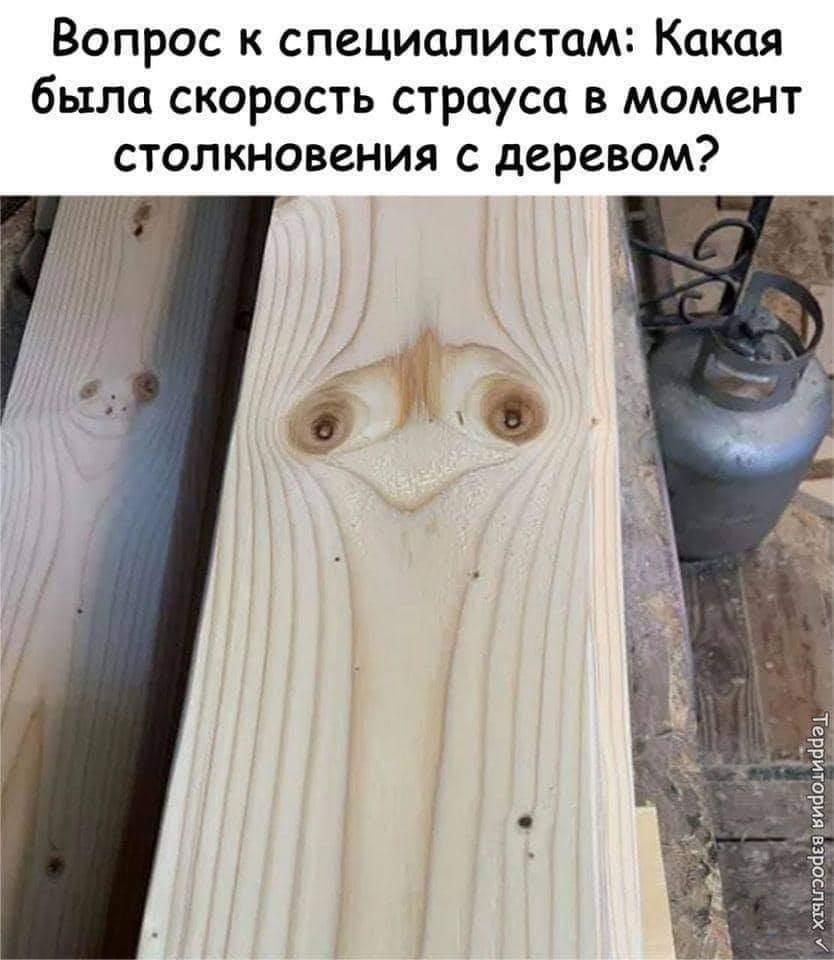https://ic.pics.livejournal.com/krasnaia_gotika/14307699/1499306/1499306_original.jpg