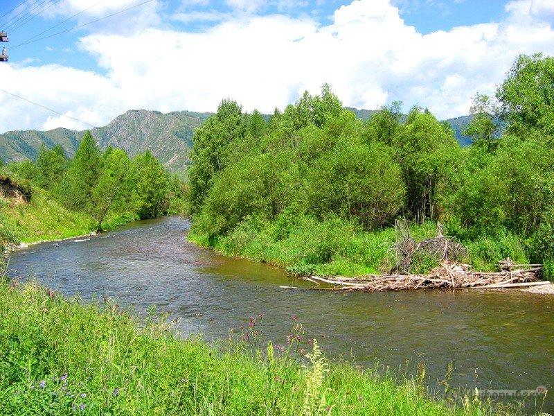 рыбалка на реке иня алтайского края