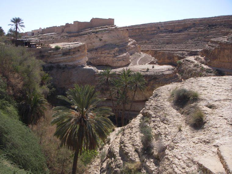 Тунис8