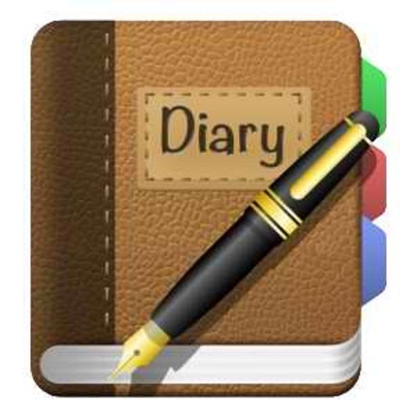 dear diary history homewor 2