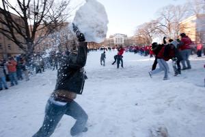 snowball_f_9_5840