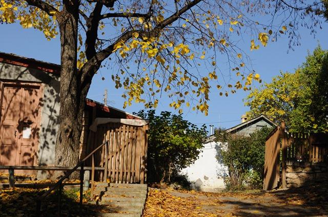 Осенний пятигорск