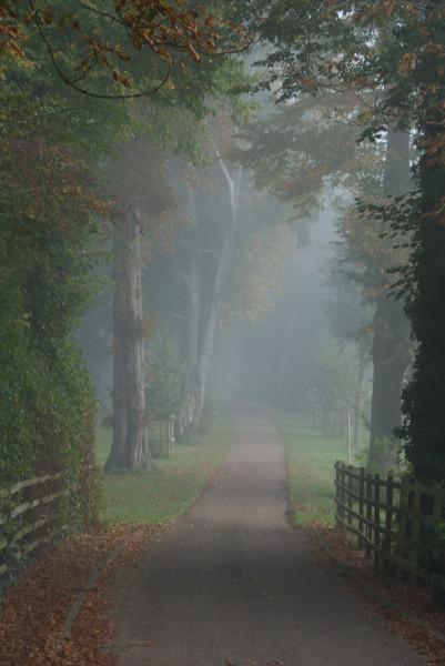 Мое первое утро в Англии