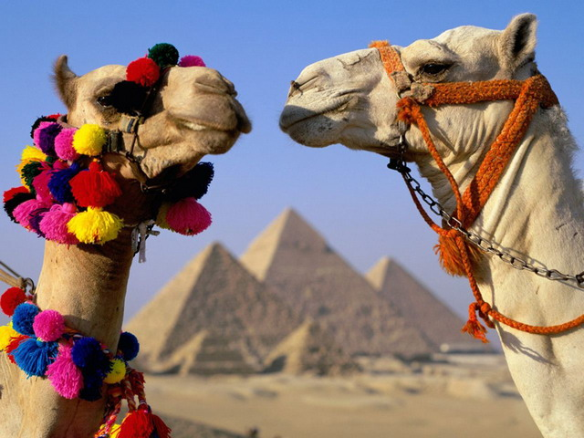 egypt1_resize