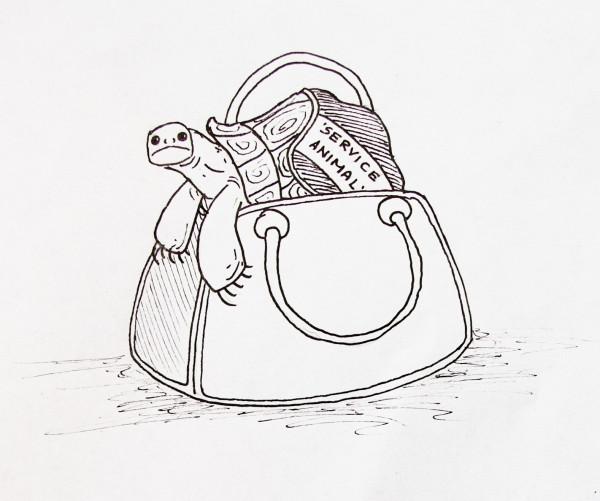 Сумка и черепаха