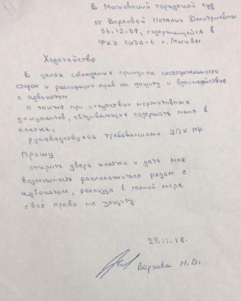 Ходатайство Наталии Верховой против содержания в клетке