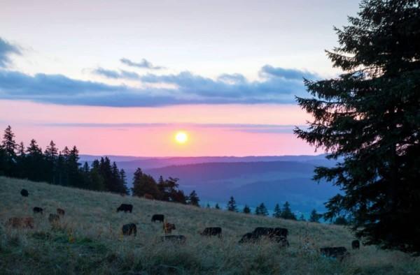 Мирная природа России