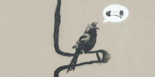 Птица поёт. Графити