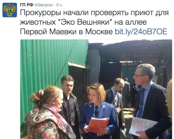 Приюты должны стать прозрачными. О создании комиссии зоозащитников в Москве