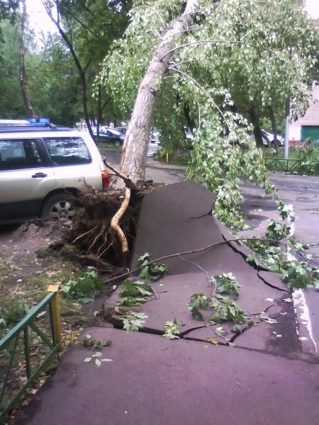 тротуар_машина