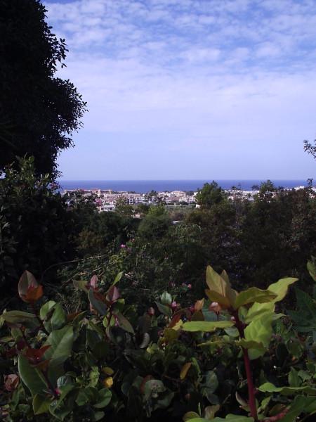 панорама5