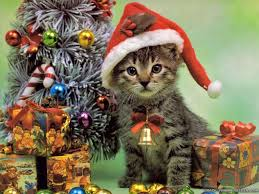 catchristmasimage