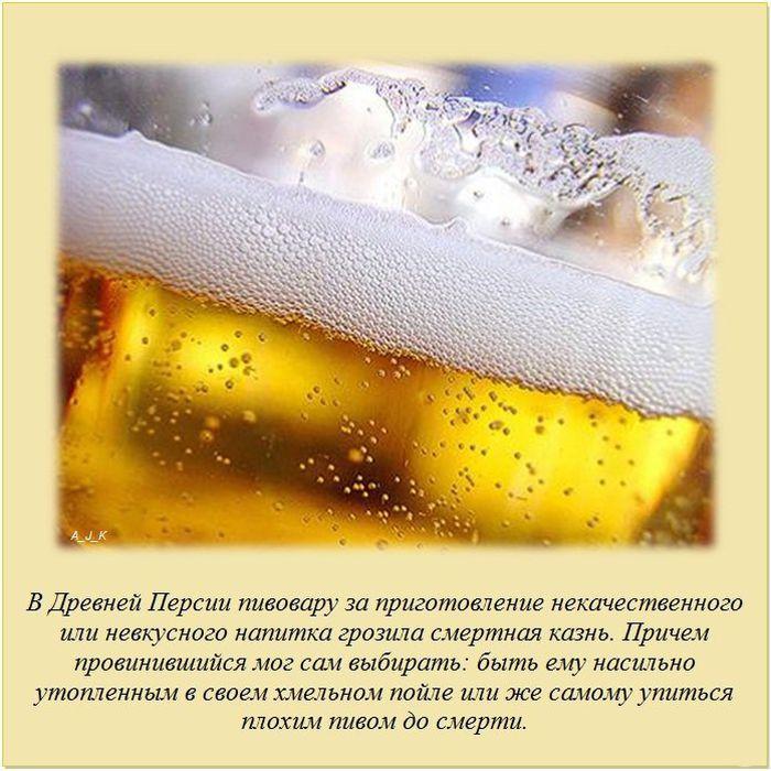 1337516884__01