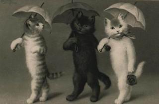 Коты в сапогах