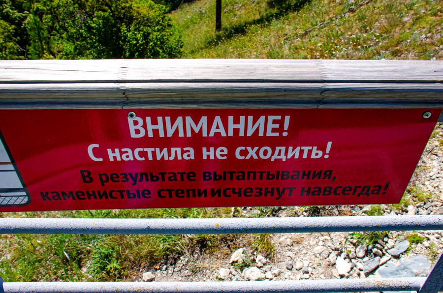 Стрельная_Каманная_чаша (27 of 68).jpg