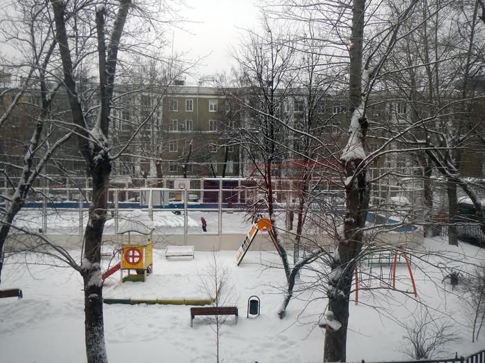 Двор_21012018