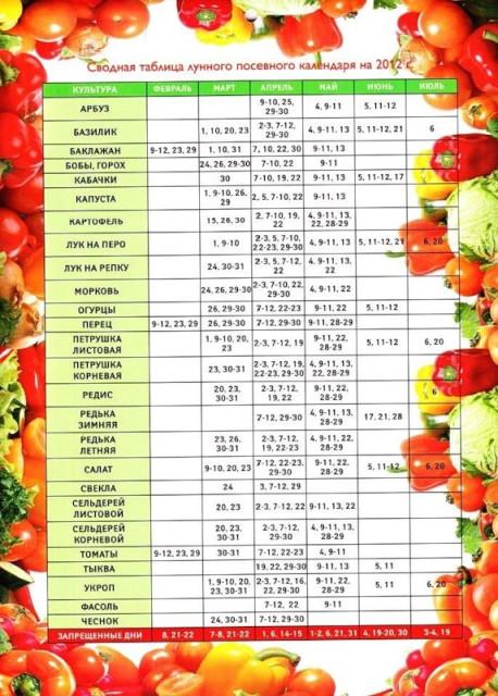 лунный посевной календарь огородника в алматы синтетическое термобелье