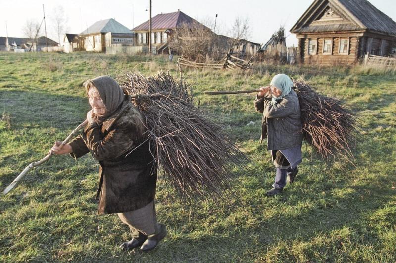 А этот валежник можно собирать, или бабушек оштрафуют и возбудят уголовное дело? Фото: Николай МОШКОВ/ТАСС
